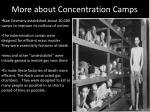 more about concentration camps