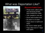 what was deportation like
