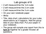 lab groups of 6