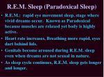 r e m sleep paradoxical sleep1