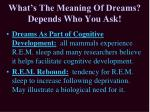what s the meaning of dreams depends who you ask3
