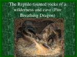 the reptile taunted rocks of a wilderness and cave fire breathing dragon