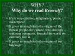 why why do we read beowulf