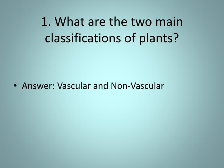 1 what are the two main classifications of plants n.