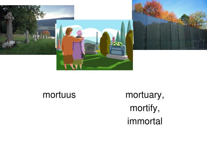 mortuusmortuary,