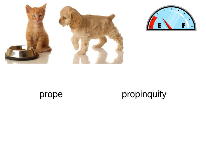 propepropinquity