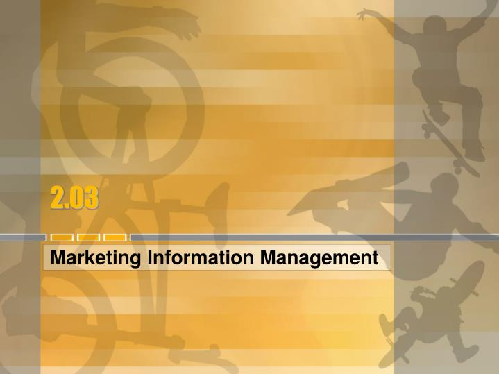 marketing information management n.