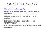 pdb the protein data bank
