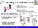 geometry of a pb pb collision