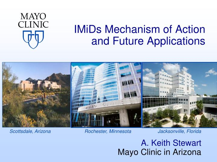 imids mechanism of action and future applications n.