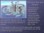 hurricane eye and eyewall