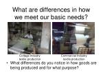 what are differences in how we meet our basic needs2