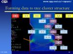 forming data to tree cluster structure