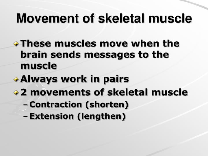 Movement of skeletal muscle