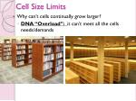 cell size limits1