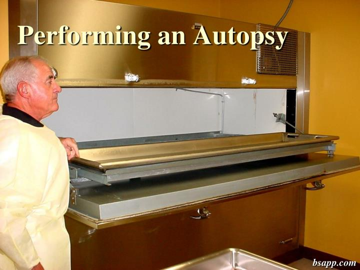performing an autopsy n.