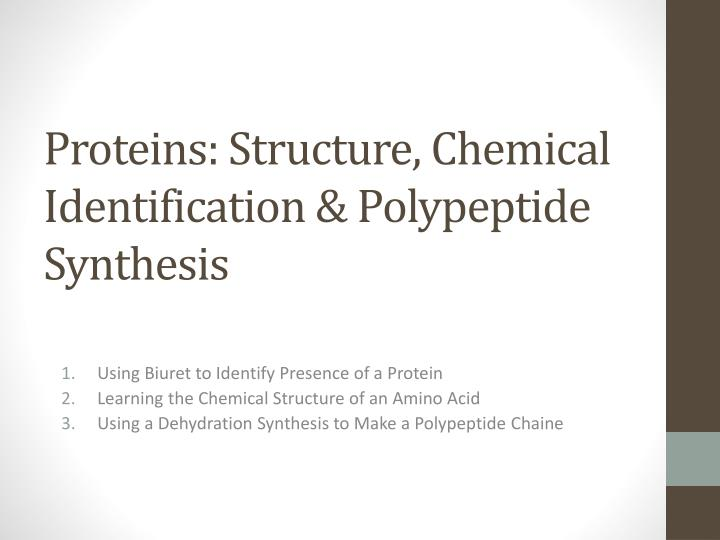 proteins structure chemical identification polypeptide synthesis n.
