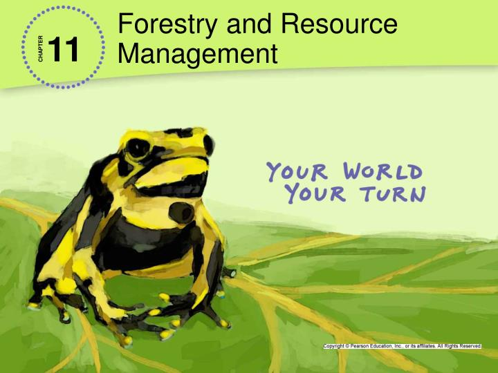 forestry and resource management n.