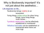 why is biodiversity important it s not just about the aesthetics