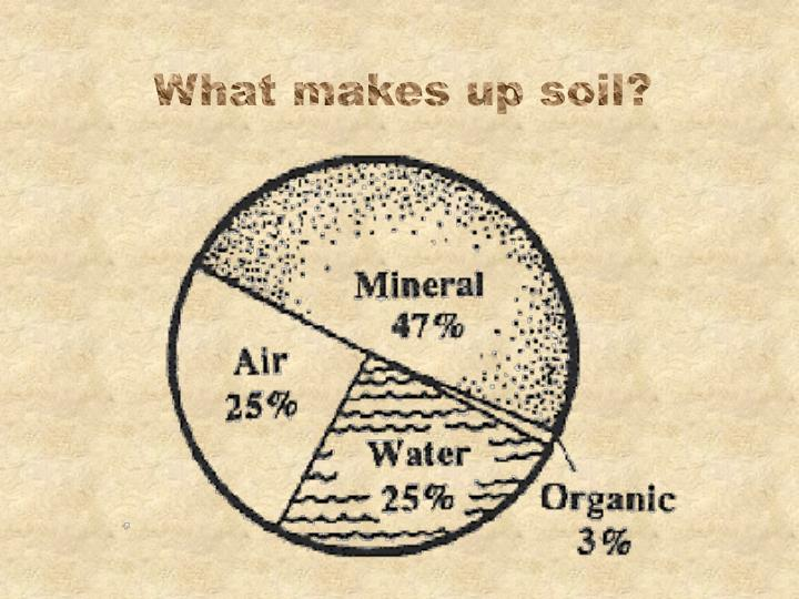 What makes up soil?