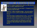 monkey care feeding rules