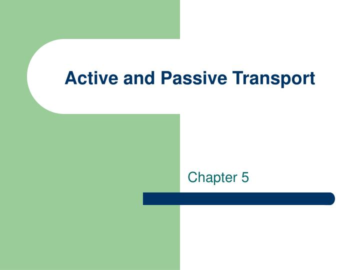 active and passive transport n.