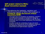 qsp project related to meas basel convention example
