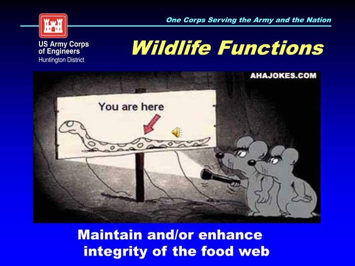 Wildlife Functions