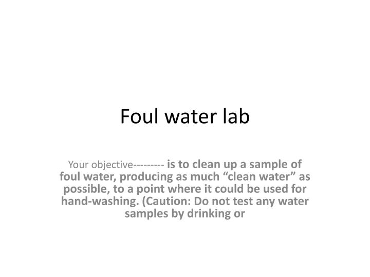 foul water lab n.
