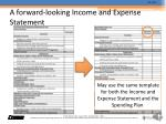 a forward looking income and expense statement