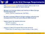 glite grid storage requirements
