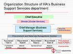 organization structure of ha s business support services department