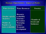 strategic opportunities impact on nodes