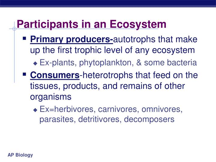 Participants in an Ecosystem