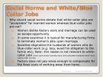 social norms and white blue collar jobs