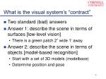 what is the visual system s contract