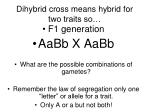 dihybrid cross means hybrid for two traits so