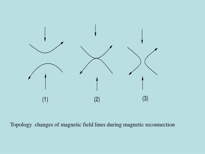 Topology  changes of magnetic field lines during magnetic reconnection