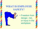 what is employee safety