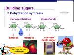 building sugars1