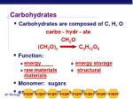 carbohydrates1