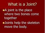 what is a joint