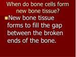 when do bone cells form new bone tissue