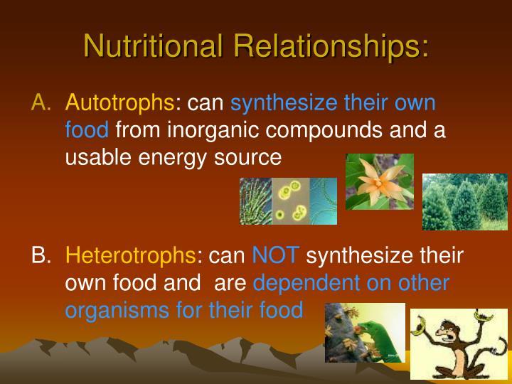 Nutritional Relationships: