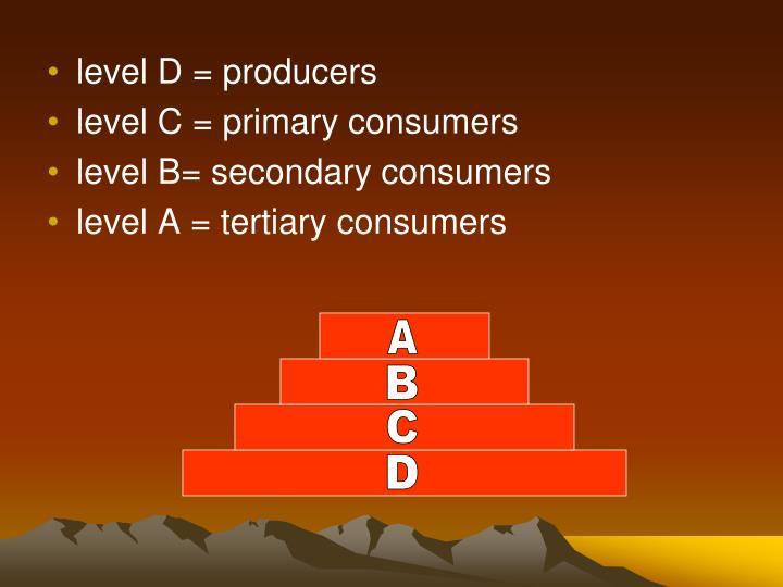 level D = producers