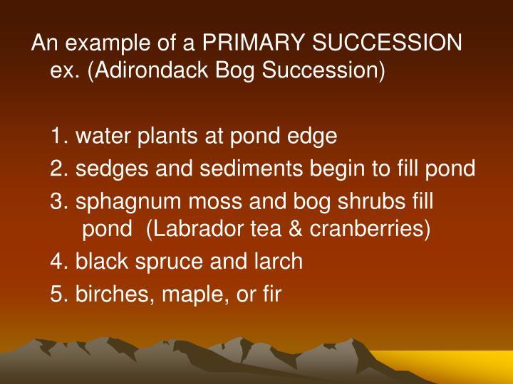An example of a PRIMARY SUCCESSION  ex. (Adirondack Bog Succession)