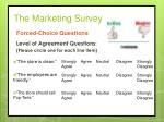 the marketing survey11