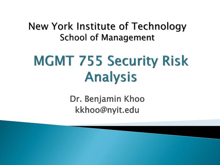 mgmt 755 security risk analysis n.