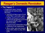 reagan s domestic revolution