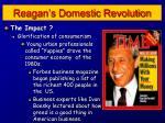 reagan s domestic revolution1
